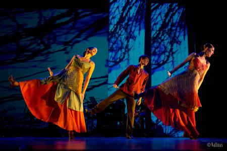 Ibérica de Danza