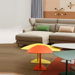 Natural Collection, Sancal